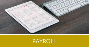 Payroll Services Locally In Bradford, Bingley, Pudsey, Queensbury, Thornton, Wilsden, Yorkshire AM WEBB ACCOUNTANTS (BRADFORD)